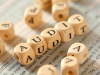 2017 10 10 12 18 58 100x75 - استانداردهای عمومی حسابرسی
